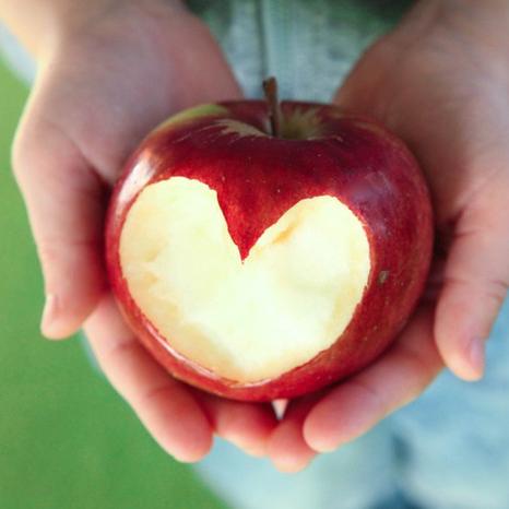 my-self-my-health-my-whole-health-program-heart-apple